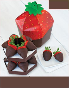 Chocolate Dipped Signature Berry Box