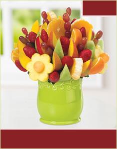 Fruit Fiestaفروت فيستا